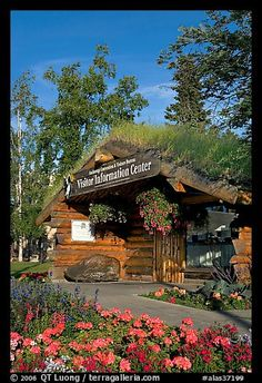 Anchorage Log Cabin Visitor Information Center West Fourth Ave., Anchorage) The key to all knowledge of local places, cost FREE Alaska Tours, North To Alaska, Alaska Usa, Alaska Trip, Anchorage Alaska, Alaska Travel, Alaska Cruise, Asia Continent, Mother Daughter Trip
