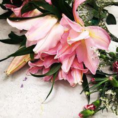 HUSH goes spring #flowers #turczynska #springedition #pink #newcampaign #fashion #polishdesigners #hushwarsaw #pinupupstudio #justyna #romina #labiosthetique #polishfashion #hellospring #maj #may2016