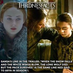Game of thrones facts. Sansa Ned Arya Stark - Game of thrones facts. Game Of Thrones Bar, Game Of Thrones Facts, Game Of Thrones Quotes, Winter Is Here, Winter Is Coming, Valar Morghulis, Valar Dohaeris, Game Of Thrones Instagram, Thoughts