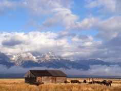 The Grand Tetons : Grand Teton National Park, Jackson, Wyoming.Grand Teton is the highest mountain in Wyoming's Grand Teton National Park, and a classic destination in American mounataineering. National Parks Map, Grand Teton National Park, Yellowstone National Park, Jackson Wyoming, Park Hotel, Landscape Photos, Historical Sites, The Great Outdoors