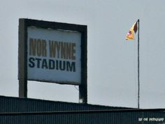 Home of the Tiger cats.
