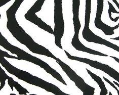 1000+ ideas about Zebra Curtains on Pinterest