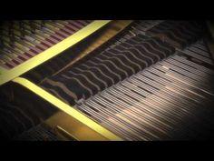 Shigatsu wa Kimi no Uso Ost [ Kousei piano performance ] Ep 1