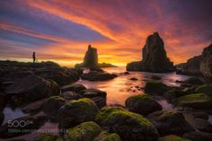 Rise Above by williampatino  landscape sunrise beautiful person seascape australia colorful moss cathedral rocks kiama NSW Rise A