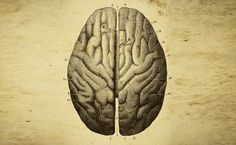 Patients with post-traumatic stress disorder (PTSD) who have a larger brain region are more likely to respond to exposure-based therapy -- a type of cognitive behavioural therapy -- for the mental health condition, finds a new research.