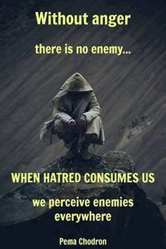 """""""Without anger there is no enemy... When hatred consumes us we perceive enemies everywhere"""" -Pema Chodron"""
