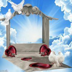 Birthday in heaven Wedding Background Images, Studio Background Images, Photo Background Images, Birthday Photo Frame, Birthday Frames, Foto Montages, Peace Pictures, Mom Pictures, Dove Images