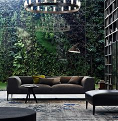 Inside looking out to vertical garden -massive glass wall in a library room