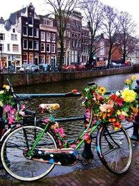 Bicycle in Ámsterdam