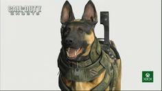 Grafica modello cane della XBOX ONE