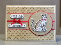 Nine Lives True Love - JanB Cards Love Birthday Cards, Dog Birthday, Handmade Birthday Cards, C Is For Cat, Pet Sympathy Cards, Nine Lives, Dog Cards, Animal Cards, Cards For Friends