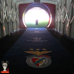A Minha Chama: LdC FG1: SL Benfica 1 CSKA 2 Benfica Wallpaper, Portugal, Training, Wallpapers, Stadium Of Light, Club, Backgrounds, Soccer, Paisajes