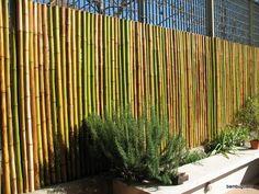 cañas bambu tacuara cercos techos colocacion sin cargo Garden Fence Panels, Fence Art, Bar, Glamping, Ideas Para, Hostel, Bamboo, Sweet Home, Backyard