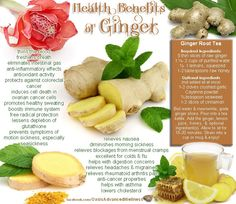 Health Benefits of Ginger. Fall/Autumn is a time for us to slow down as the season changes from active summer to passive winter. During this transition our immune system can be lowered and ginger is a great way help with that. Ginger and lemon tea is powerful cold/flu tonic.