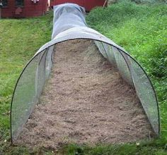 DIY Chicken Tunnel (Step-by-Step Guide) | Ask a Prepper