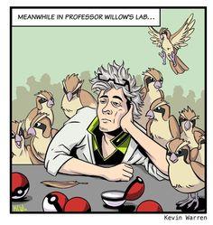 Professeur-Willow-Go-Japon-3