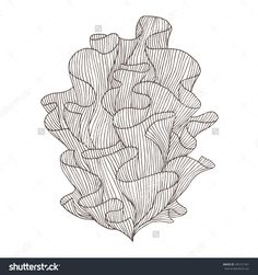 Vector sketch of coral. Arte Coral, Coral Art, Fan Coral, Coral Reef Drawing, Coral Painting, Kunstjournal Inspiration, Abstract Sketches, Coral Design, Arte Sketchbook