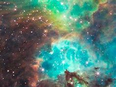 Space, the place where life began!