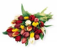 Fresh flowers from Melbourne for You