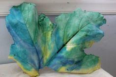 Leaf Casting with Plaster of Paris 61