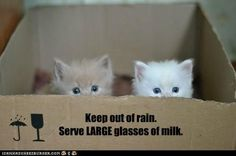 Keep out of rain...
