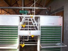 ★CONNECT Poultry Farm Equipment☆-egg collector