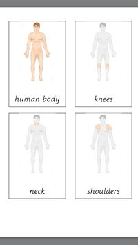 FREE PRINTABLE: Parts of Human Body