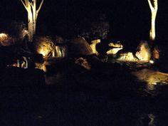 Close up of a Nightscaped Swimming Pool Waterfall. Swimming Pool Waterfall, Natural Swimming Pools, Ponds, Nature, Natural Pools, Naturaleza, Off Grid, Natural, Rock Pools