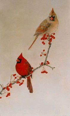 61 new Ideas tattoo ideas female quotes life beautiful Cardinal Bird Tattoos, Red Bird Tattoos, Cardinal Birds, Small Cardinal Tattoo, Cardinal Drawing, Watercolor Bird, Watercolor Paintings, Cardinals, Polychromos