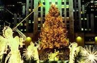 would love to go to NYC at christmas time New York Christmas, Christmas Time, Places To Travel, Places To Go, Ny Ny, Rockefeller Center, Time Of The Year, Tis The Season, Vacation Spots
