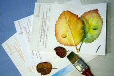 Aquarelle zum Herbstanfang | Verschiedene Aquarellpapiere bringen beim Herbstlaub unterschiedliche Ergebnisse (c) FRank Koebsch
