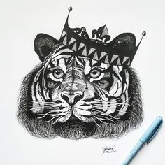Tiger - King from Asia