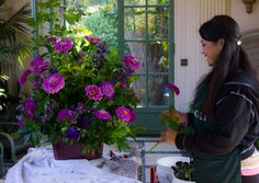 I LOVE the smell of freshly cut grass and being surrounded by the scent of just nature. My first big whiff at Filoli Gardens gave me the chills. It felt relaxing … Filoli Gardens- Woodside California Read Florals, Centerpieces, Gardens, Plants, Travel, Beautiful, Floral, Viajes, Flowers