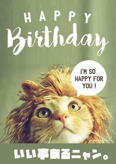 猫好きの友達に贈るお誕生日お祝い画像