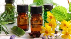 Aromatherapy beginner? See my new website for information on the benefits of using essential oils