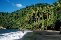 Découverte de la Martinique sauvage, au nord de l'île - National Geographic France   RePinned by : www.powercouplelife.com