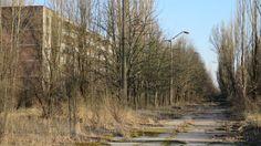 A 3 km à vol d'oiseau de la centrale de Tchernobyl, 50.000 habitants vivaient dans la petite ville de Pripyat, principalement des employés et leurs familles. En 29 ans, les arbres et les broussailles ont envahi la ville abandonnée, devenue une destination très prisée des touristes.