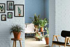In einer offenen Raumgestaltung kann es helfen, die hintere Wand dunkler zu streichen: Die Rückwand wird optisch näher zum Betrachter geholt und ein angenehmeres Gesamtbild entsteht. Foto: Dulux