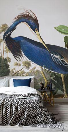 Birds of America Wallpaper Murals: Blue Heron
