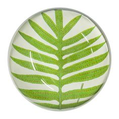 Designers Guild create inspirational home décor collections and interior furnishings including fabrics, wallpaper, upholstery, homeware & accessories. Fern Frond, Designers Guild, Luxury Home Decor, Paper Weights, Plant Leaves, Interior Design, House Styles, Wallpaper, Plants
