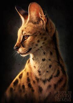 Serval portrait, Johanna Tarkela on ArtStation at https://www.artstation.com/artwork/qEK2D