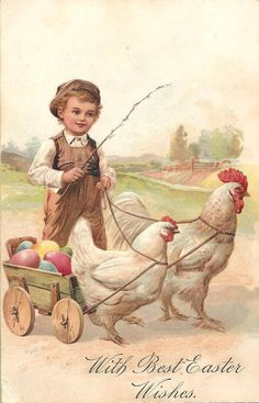 .little boy with chicken cart