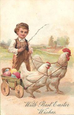 .little boy with chicken cart