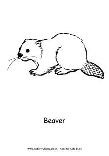 north american animals coloring pages canadian animals colouring native american unit. Black Bedroom Furniture Sets. Home Design Ideas