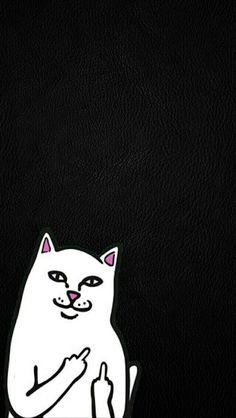 Ripndip Nermal Wallpapers chido