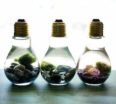 These easy DIY light bulb aquariums make a great home for tiny Japanese Marimo moss balls and are super cute as homemade Christmas gifts!                                                                                                                                                                                 More