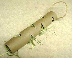 Paper Towel hide the food guinea pig toy