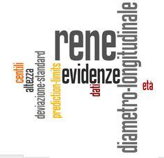 Le misure ecografiche del rene: opinioni? Consensus? Evidenze? — Topic, Journal Club, TILT & Problem Solving #NOECM — Medium
