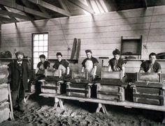 The Dynamite Mixers at Ardeer Stevenston, North Ayrshie - 1907 West Coast Scotland, Living In England, Family Roots, Old Photographs, Sick, Mixers, Vintage, Inspiration, Biblical Inspiration