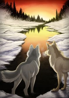 Two wolf furries looking at a lake with the sunset.